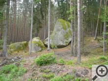 Podobných monumentů potkáte v lese desítky