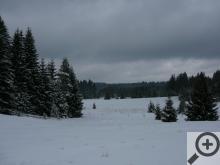Pohled do krajiny okolo Nového Údolí není v zimě zrovna optimistický