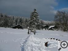 Kladská se v zimě stává doslova Tajgou