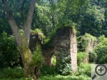Zbytky jednoho z mlýnů po cestě k Velkému rybníku, tohle je konkrétně Cimburk