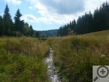 Divoká Bystřice ukazuje trošku jinou tvář Moldavy