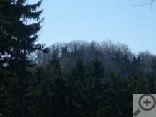 Silueta prokukující skrz stromy je zřícenina hradu Herštejn