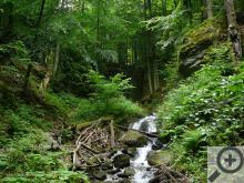 Nýznerovské vodopády na Stříbrném potoce