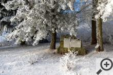 Zimní stopa J. A. Komenského